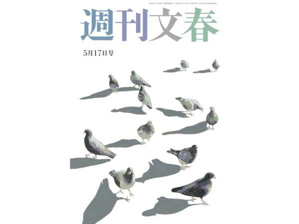 小保方晴子グラビアが掲載された週刊文春の表紙画像